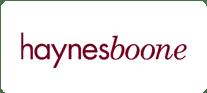 media partner template haynes boone